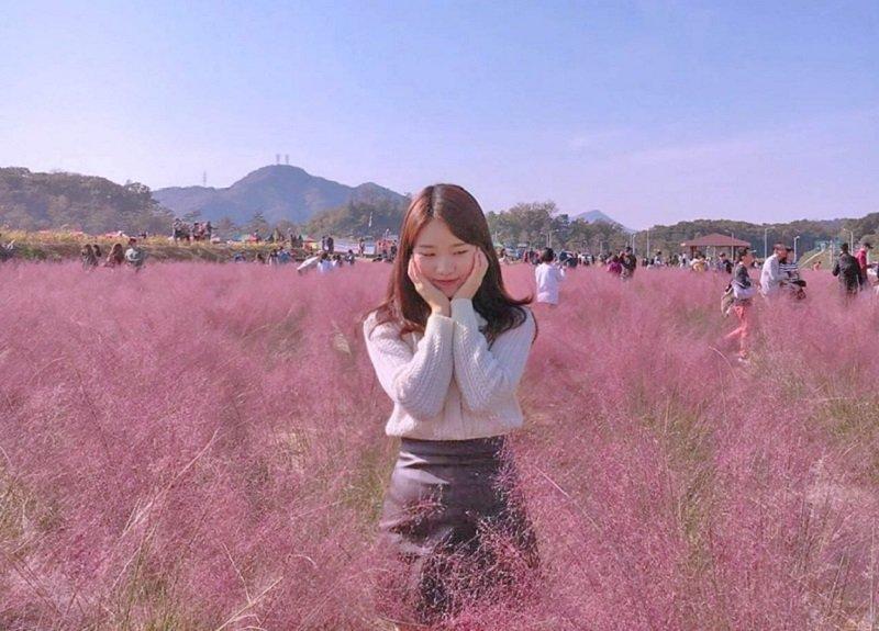 Во Вьетнаме пройдёт Фестиваль розовой травы